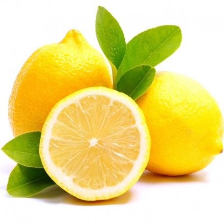 Lemon quintessence